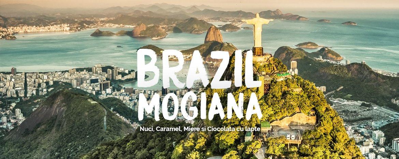 cafea brazil mogiana